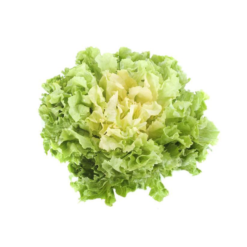 Légumes Scarole Plate